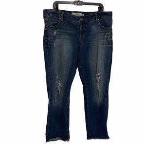 Torrid Crop Distressed Boyfriend Blue Jeans SZ:16